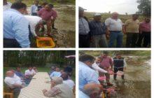 Balahor Deresine Kırmızı Benekli Yavru Alabalık Salımı Gerçekleştirildi