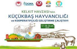 Küçükbaş Hayvancılığı Ve Kooperatifçiliği Geliştirme Çalıştayı 17-18 Ocak