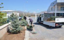 Başkan Nas Oturma Alanları Ve Ağaçlandırma Çalışmalarına Devam Ediyoruz.