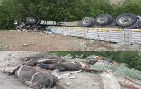 Pöske Dağında Trafik kazası 1 ölü